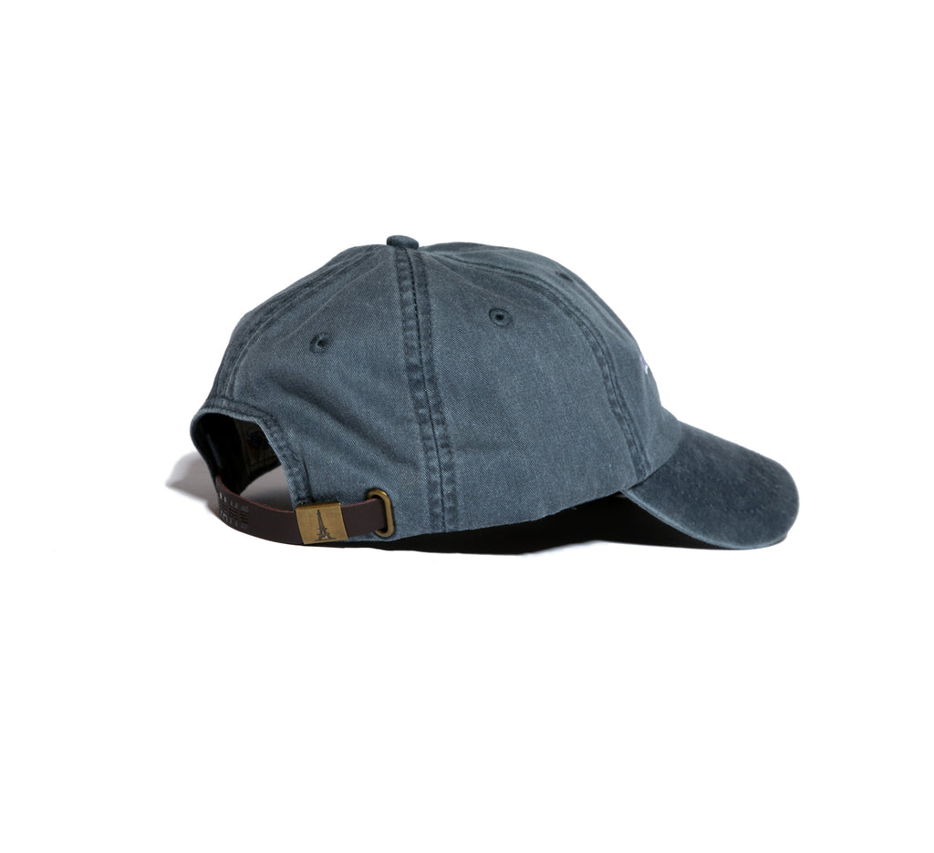 Fan of the Team Dad Hat Navy Side view