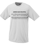 America Was Beautiful Song Parody Deplorables Hillary Clinton Donald Trump Shirt Election 2016 President
