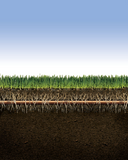 "Rain Bird - Sub-Surface XFS0918100  Dripline with Copper Shield Technology - 0.9 GPH, 18"" Spacing, 100 ft. Coil"