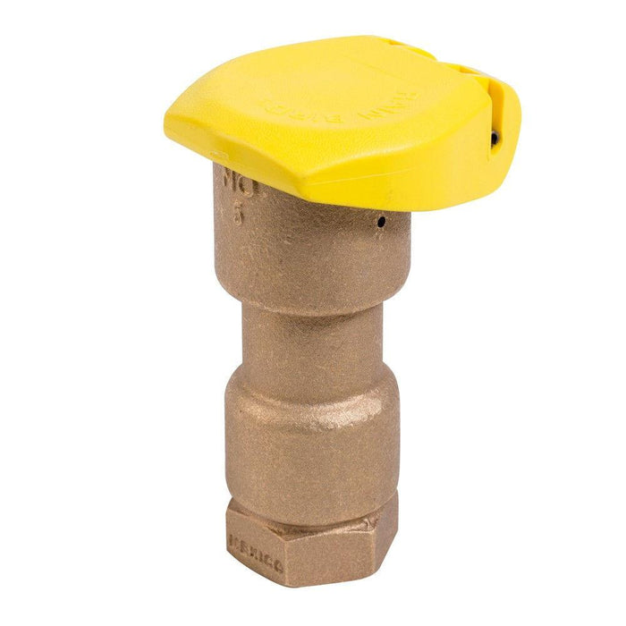 Rain Bird - 5RC - 1 in. Quick Coupling Valve -  - Irrigation  - Big Frog Supply