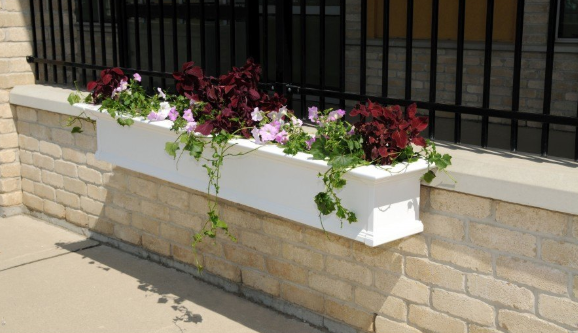 "Mayne - Yorkshire Window Box 8FT White ""KD"""
