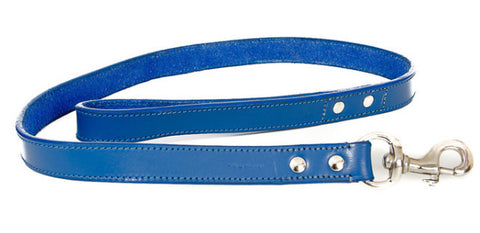 Blue Leather Lead