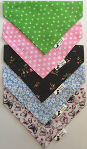Medium Bandana 5 Pack