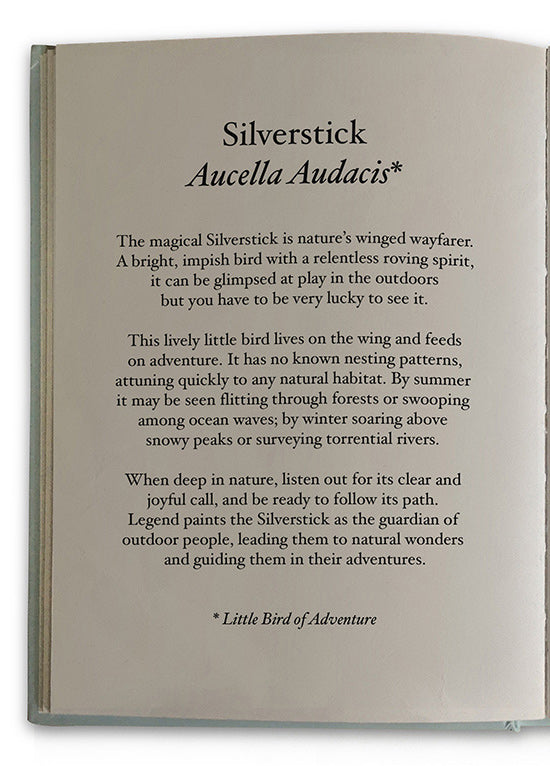 Silverstick Description