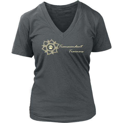 Transcendent Trainers Dark V-Neck