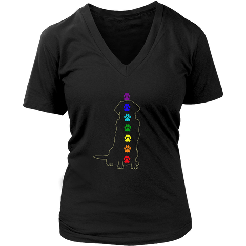 Chakra Labrador Retriever Ladies V-Neck