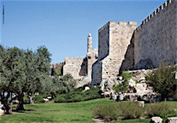 Jerusalem Photography Poster - Old City & Tower of David