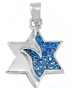 Peace Dove Star of David Necklace, Silver & Crystals