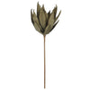 Artificial Grey EVA Foam Yucca Stem - House of Silk Flowers®  - 2