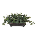 Artificial Philo Ledge Plant - House of Silk Flowers®  - 2