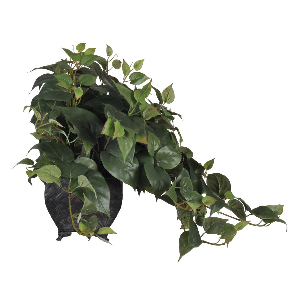 Artificial Philo Ledge Plant - House of Silk Flowers®  - 3
