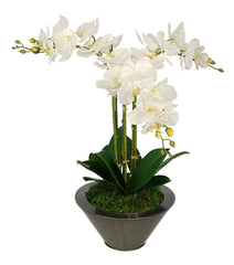 Artificial Triple Stem Orchid in Round Zinc Vase - House of Silk Flowers®  - 4