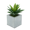 Faux Frosted Light Green Succulent in Farmhouse Square Zinc Pot