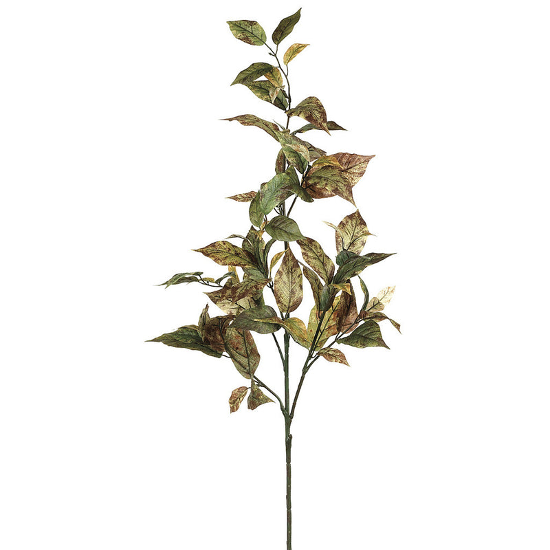 "Artificial 32"" Green Brown Coffee Leaf Spray (Set of 2) - House of Silk Flowers®"