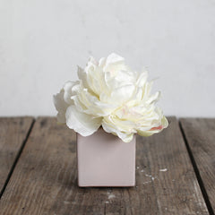 Shabby Chic® White Peony in Blush Ceramic Cube Vase