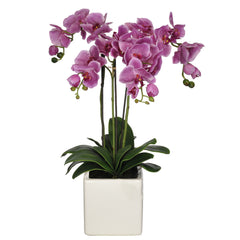 Artificial Triple-Stem Phalaenopsis Orchid in Cube Ceramic - House of Silk Flowers®  - 10