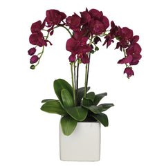 Artificial Triple-Stem Phalaenopsis Orchid in Cube Ceramic - House of Silk Flowers®  - 20