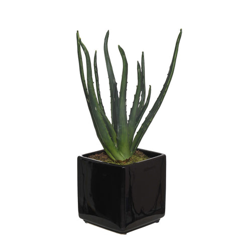 Artificial Aloe in Cube Ceramic Vase - House of Silk Flowers®  - 1