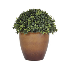 Artificial Half-Ball Boxwood Topiary in Ceramic - House of Silk Flowers®  - 2
