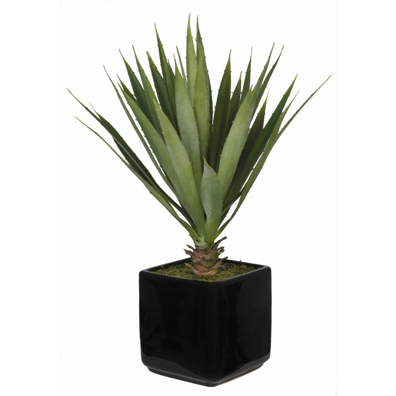 Artificial Baby Yucca in Cube Vase - House of Silk Flowers®  - 1