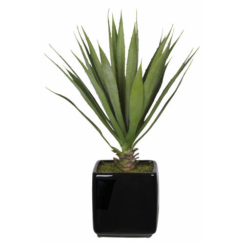 Artificial Baby Yucca in Cube Vase - House of Silk Flowers®  - 2