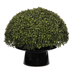 "Artificial 20"" Half-Ball Boxwood Topiary in Ceramic - House of Silk Flowers®  - 2"