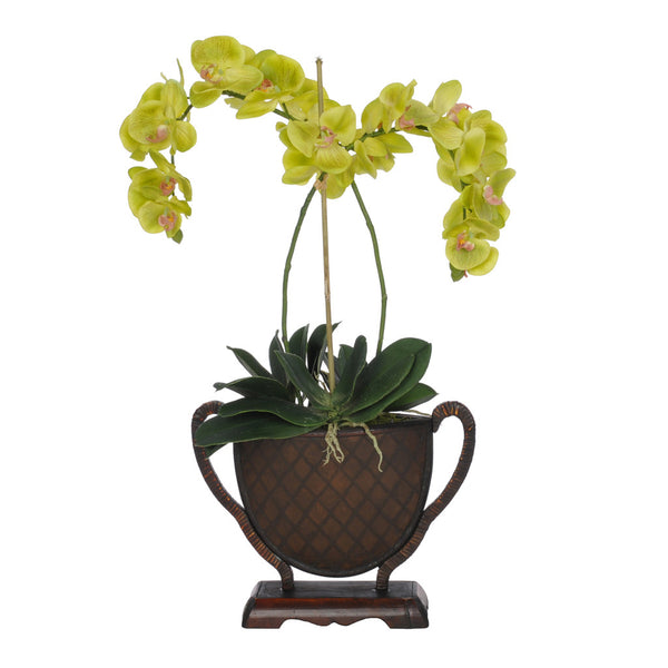 Artificial Green Criss-Cross Phalaenopsis Orchid in Rattan Vase - House of Silk Flowers®