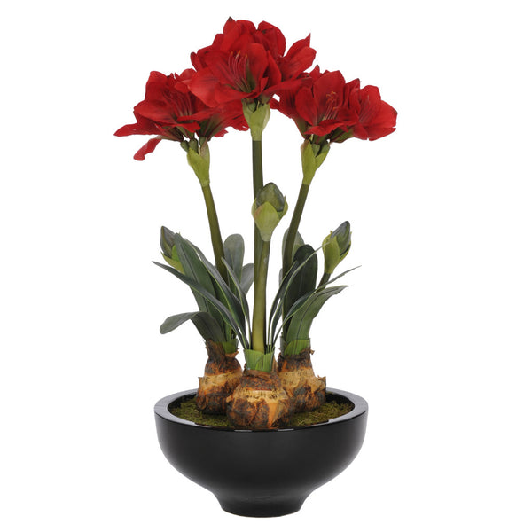 Artificial Red Amaryllis x3 in Gloss Black Ceramic Bowl