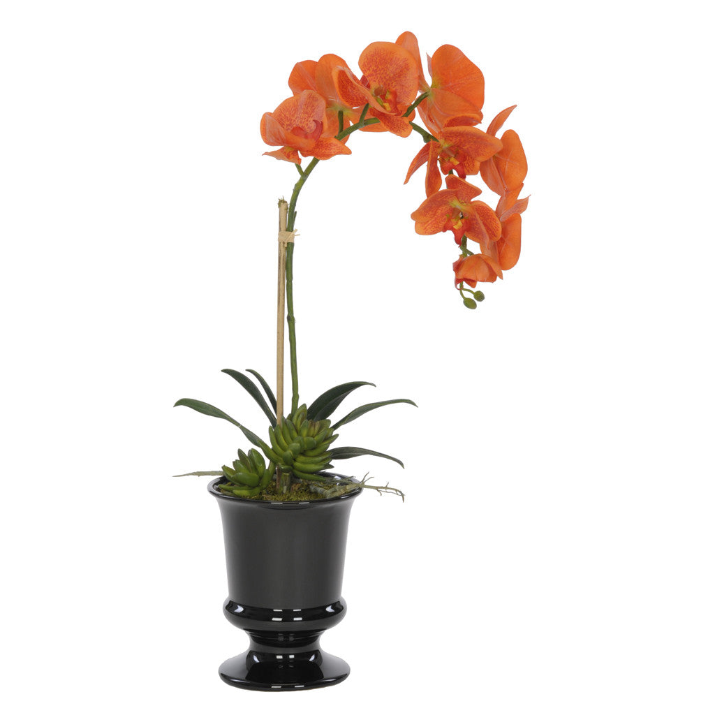 Artificial Phalaenopsis Orchid in Black Ceramic Urn - House of Silk Flowers®  - 5