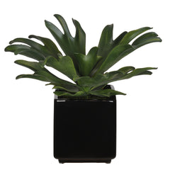 Artificial Staghorn Succulent in Cube Ceramic - House of Silk Flowers®  - 2