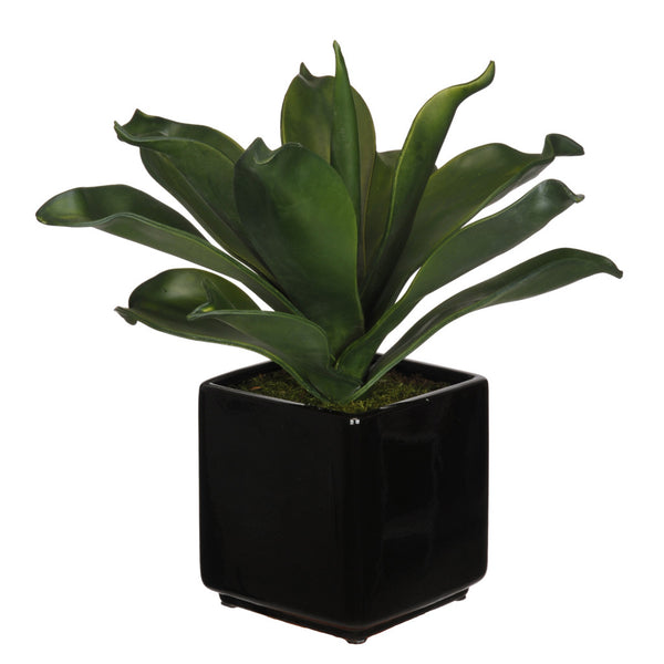 Artificial Agave Succulent in Cube Ceramic