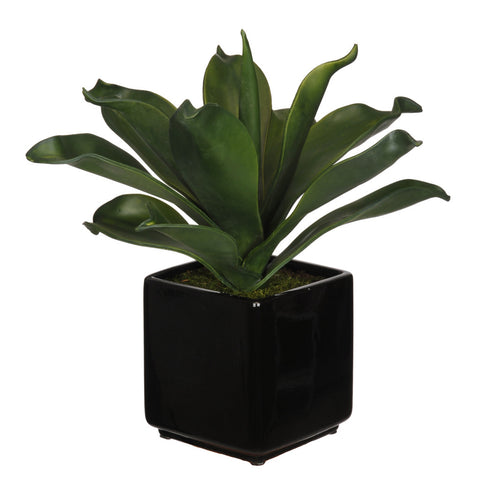 Artificial Agave Succulent in Cube Ceramic - House of Silk Flowers®  - 1