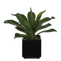 Artificial Agave Succulent in Cube Ceramic - House of Silk Flowers®  - 2