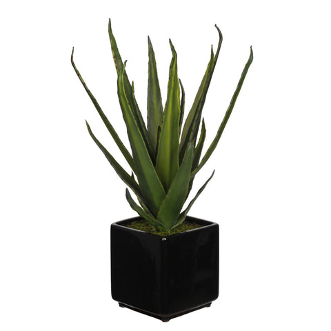 Artificial Aloe Succulent in Cube Ceramic - House of Silk Flowers®  - 1