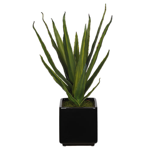 Artificial Aloe Succulent in Cube Ceramic - House of Silk Flowers®  - 2