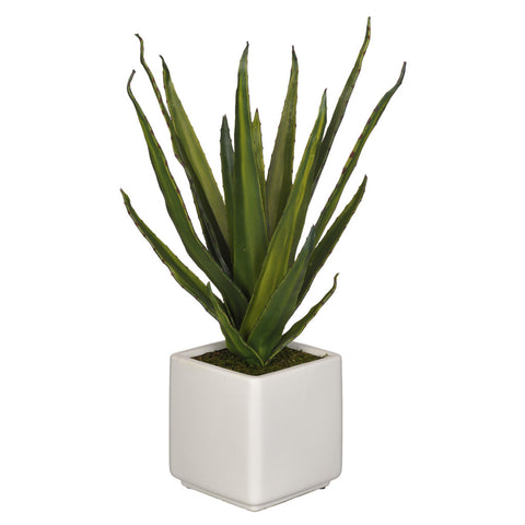 Artificial Aloe Succulent in Cube Ceramic - House of Silk Flowers®  - 3