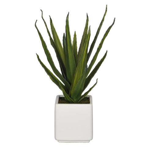 Artificial Aloe Succulent in Cube Ceramic - House of Silk Flowers®  - 4