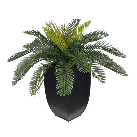 Artificial Cycas Palm in Black Zinc