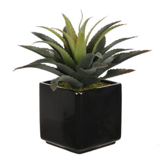 Artificial Star Succulent in Ceramic - House of Silk Flowers®  - 5