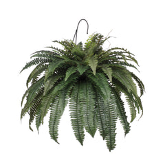 Artificial Fern Hanging Basket - House of Silk Flowers®  - 1