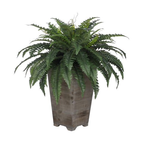 Artificial Fern in Washed Wood Planter