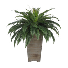 Artificial Fern in Washed Wood Planter - House of Silk Flowers®  - 2