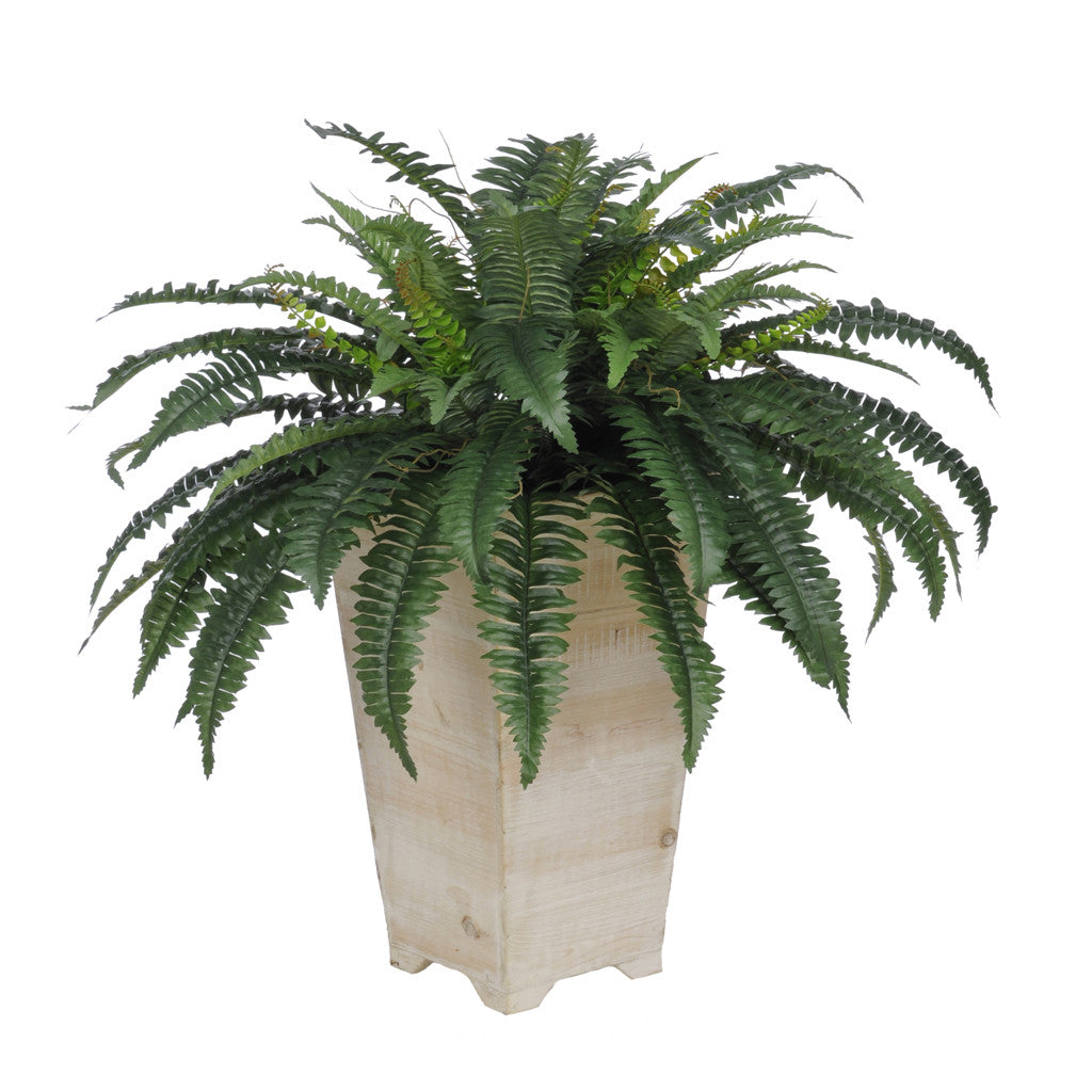 Artificial Fern in Washed Wood Planter - House of Silk Flowers®  - 1