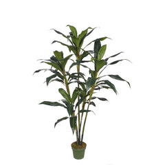 Artificial 5.5ft Cordyline Tree - House of Silk Flowers®  - 1
