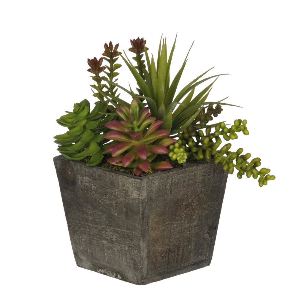 Artificial Succulent Garden in Small Wash Wood - House of Silk Flowers®  - 1