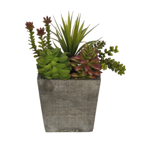 Artificial Succulent Garden in Small Wash Wood - House of Silk Flowers®  - 2