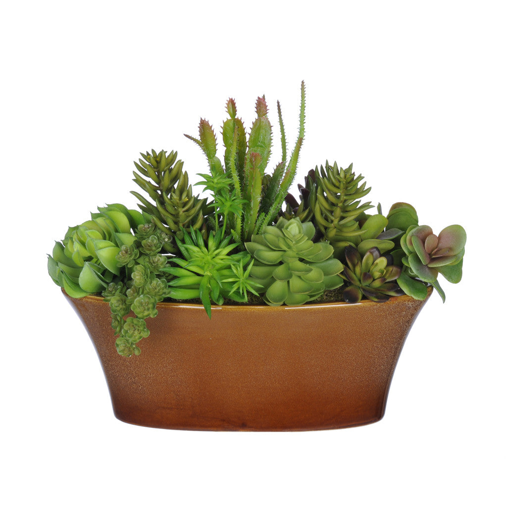 Artificial Succulent Garden in Oval Ceramic - House of Silk Flowers®  - 1