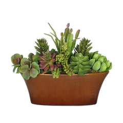 Artificial Succulent Garden in Oval Ceramic - House of Silk Flowers®  - 2