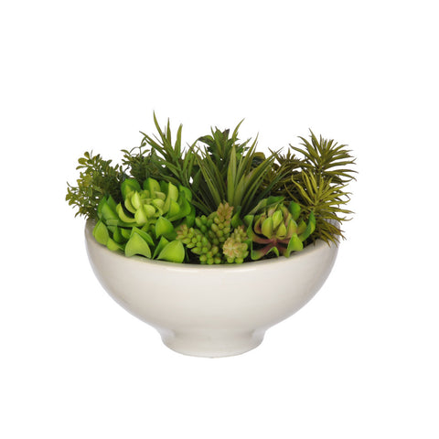 Artificial Succulent Garden in Ceramic Bowl - House of Silk Flowers®  - 2