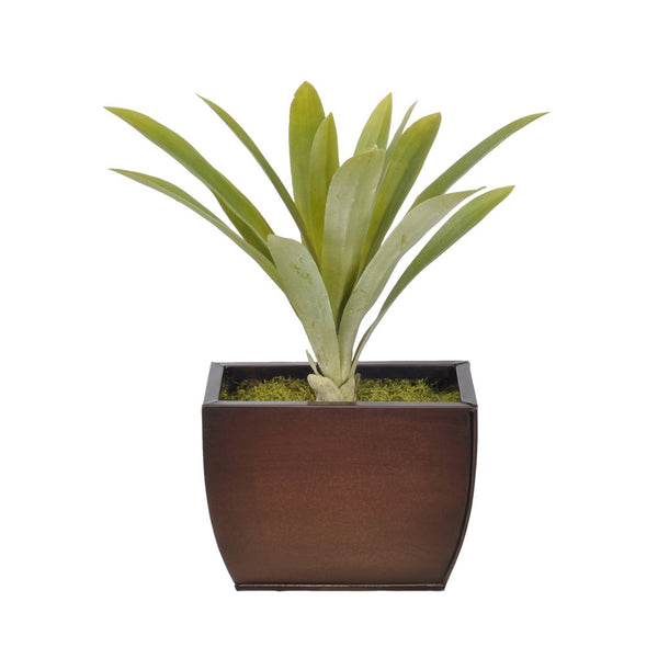 Artificial Yucca Grass in Planter